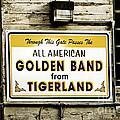 Tigerland Band Print by Scott Pellegrin