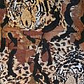 Tigers Tigers Burning Bright Print by Ruth Edward Anderson