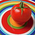 Tomato on plate with circles Poster by Garry Gay