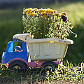 Toy Truck Planter Poster by Gordon Wood