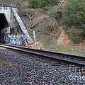 Train Tunnel At The Muir Trestle in Martinez California . 7D10228 Poster by Wingsdomain Art and Photography
