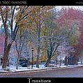 Transitions Autumn to Winter Snow Poster Poster by James BO  Insogna