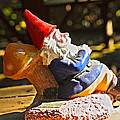 Travel Gnome Sunning Print by Cheryl Young
