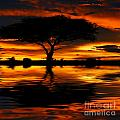 Tree silhouette and dramatic sunset Print by Anna Omelchenko