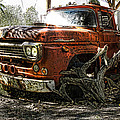 Tree Truck Print by Peter Chilelli