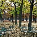 Trees And Empty Chairs In Autumn Print by Stephen Sharnoff