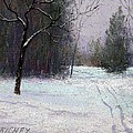 Trees in a Winter Fog Poster by Bob Richey