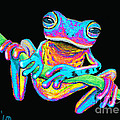 Tropical Rainbow frog on a vine Print by Nick Gustafson