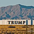 Trump Tower Nevada Print by Andy Smy