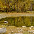 Tunnel Pond Poster by Idaho Scenic Images Linda Lantzy