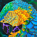 Turquoise Gold Macaw  Print by Daniel Jean-Baptiste