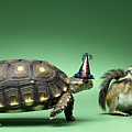 Turtle And Chipmunk Wearing Party Hats Poster by Jeffrey Hamilton