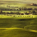 Tuscan Fields Poster by Andrew Soundarajan