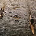 Two Rowers Paddle Down The Charles Print by Tim Laman