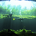 Two Scuba Divers In The Cenote System Print by Karen Doody