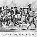 United States Slave Trade Poster by Photo Researchers