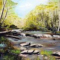 Upstate South Carolina Trout Stream Print by Phil Burton