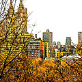 Urban Autumn in NYC Poster by Linda  Parker