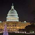 U.S. Capitol Christmas Tree 2009 Poster by Metro DC Photography