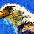 Van Gogh.s American Eagle Under A Starry Night . 40D6715 Poster by Wingsdomain Art and Photography