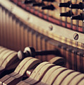 Vertical Piano Print by Isabelle Lafrance Photography