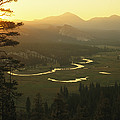 View At Dawn Of The Tuolumne River Poster by Phil Schermeister