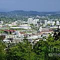 View of Portland Oregon from Pittock Mansion  Poster by Sherry  Curry