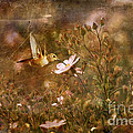 Vintage Beauty in Nature  Print by Susan Gary