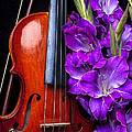 Violin and purple glads Print by Garry Gay