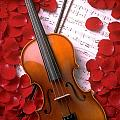 Violin on sheet music with rose petals Print by Garry Gay