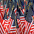 Wall of US Flags Print by Carolyn Marshall