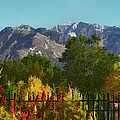 Wasatch Mountains In Autumn Painting Print by Tracie Kaska