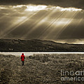 watching in red Print by Meirion Matthias