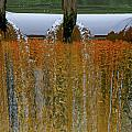 Water Fall at Grismill pond Poster by Danny Jones