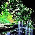 Waterfall and Rhododendron Print by Thomas R Fletcher