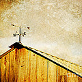 Weathervane Poster by Joan McCool