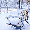 Winter bench Poster by Elena Elisseeva
