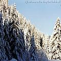 Winter Wonderland Austria Europe Print by Sabine Jacobs