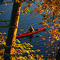 Woman Seakayaking On The Potomac River Poster by Skip Brown