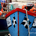Working Harbour Poster by Terri  Waters