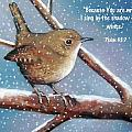Wren in Snow with Bible Verse Print by Joyce Geleynse