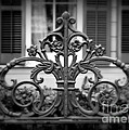 Wrought Iron Detail Print by Perry Webster