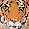 Year of the Tiger Poster by Laura Carey
