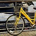 Yellow Bicycle Poster by Carlos Caetano