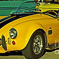 Yellow Cobra Poster by Gwyn Newcombe