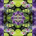 Zen Lilies Print by Bell And Todd