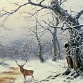 A Stag in a Wooded Landscape  Print by Nils Hans Christiansen