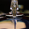 1934 Packard Hood Ornament 3 Poster by Jill Reger