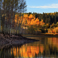 Autumn in the Wasatch Mountains Print by Utah Images