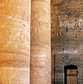 Columns with hieroglyphs depicted Horus at the Temple of Edfu Print by Sami Sarkis
